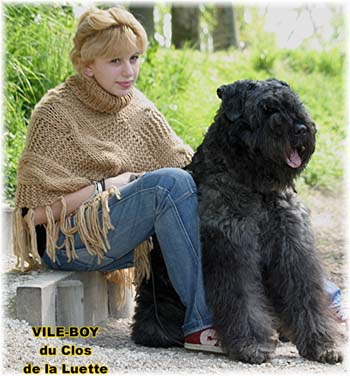 What is your favourite breed of dog and why? : AskWomen